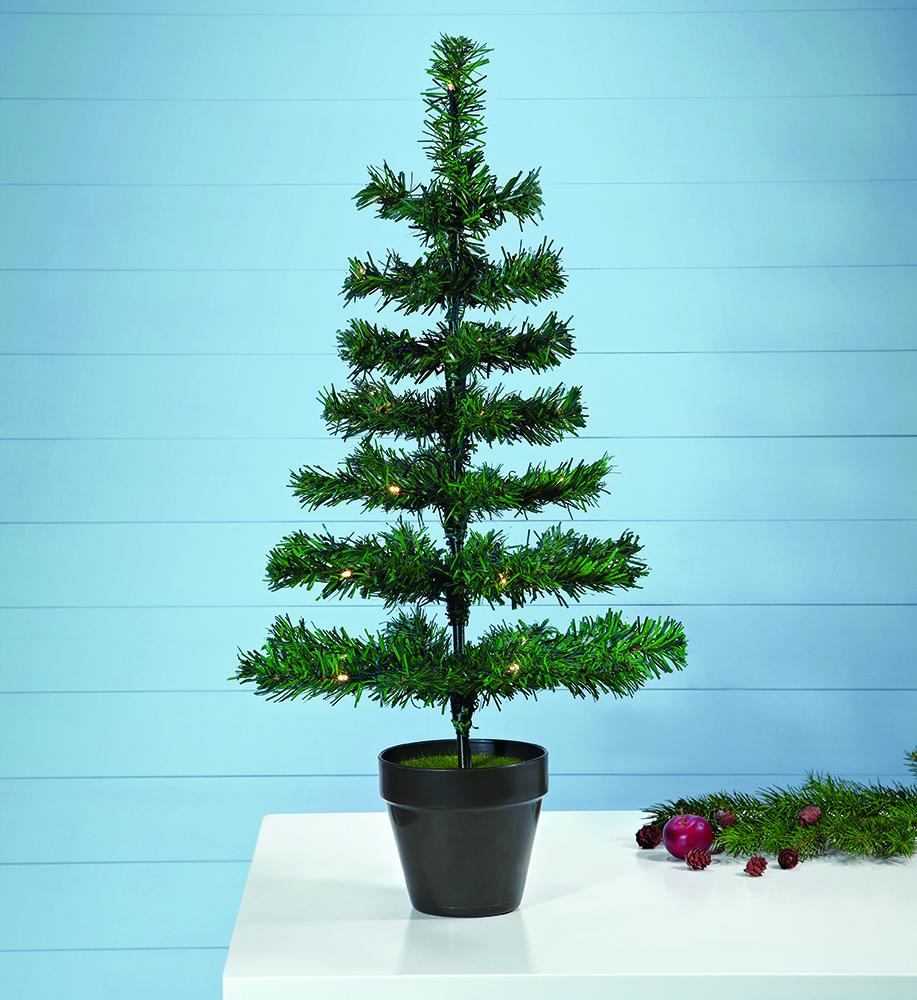 MAGGI - Christmas Tree 70