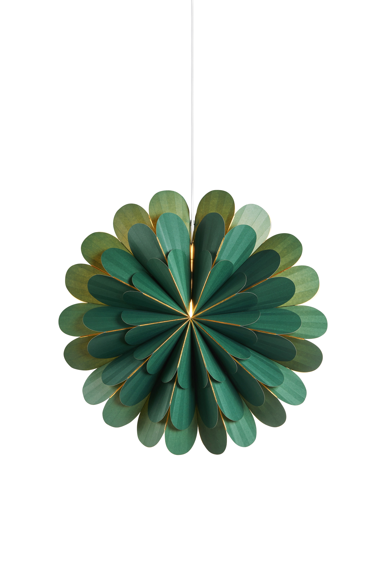 MARIGOLD - Green 45