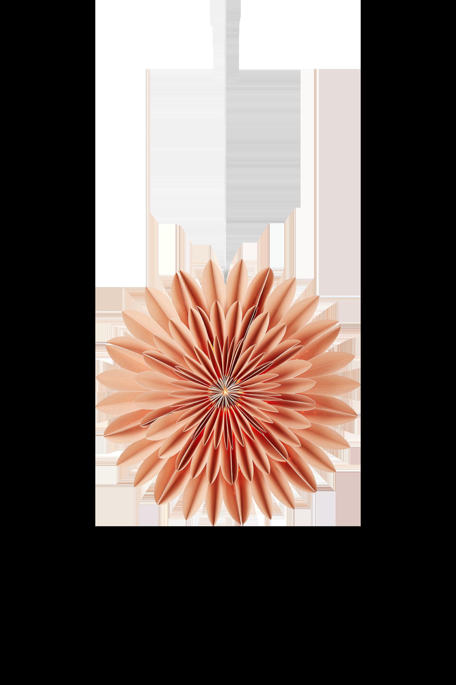CORNELIA - Light Brown 44