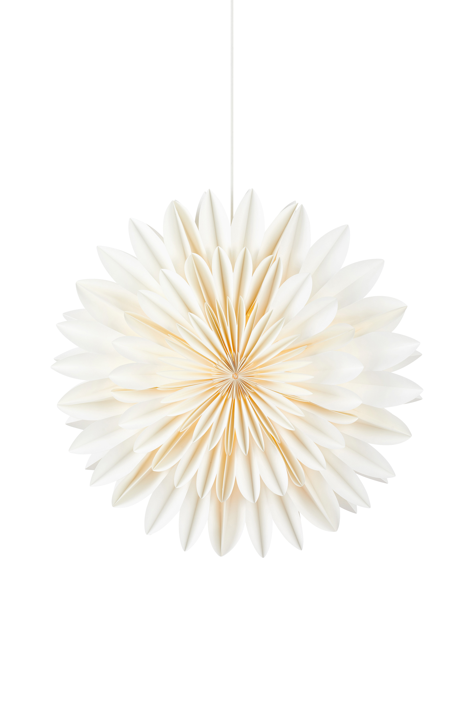 CORNELIA - White 60